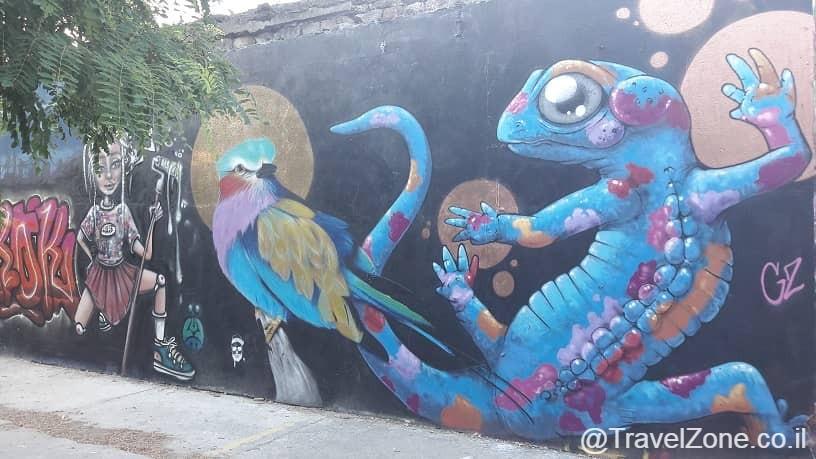 גרפיטי על קיר במתחם דרוין